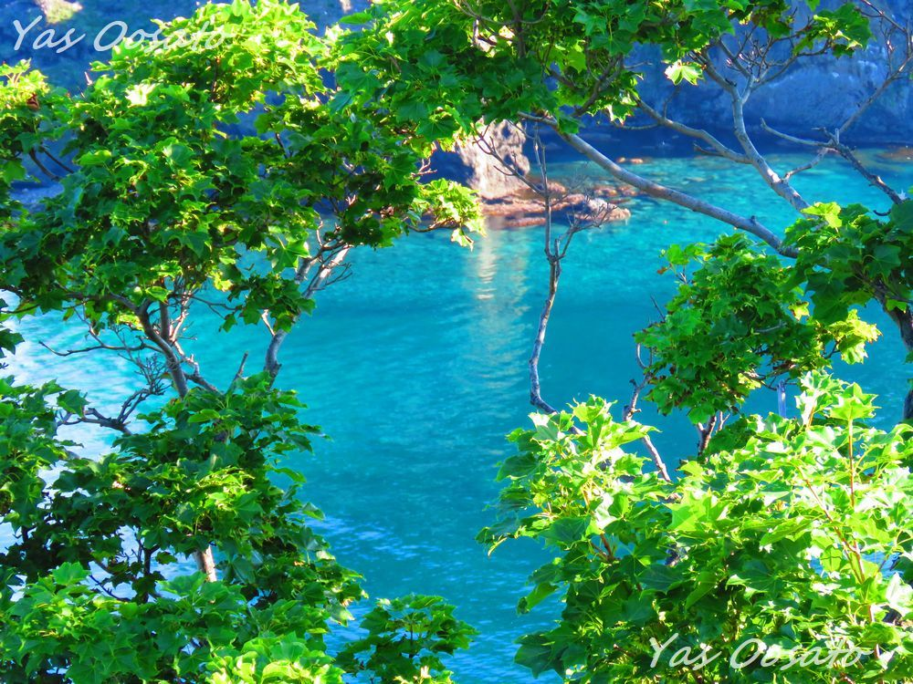 緑と青の世界