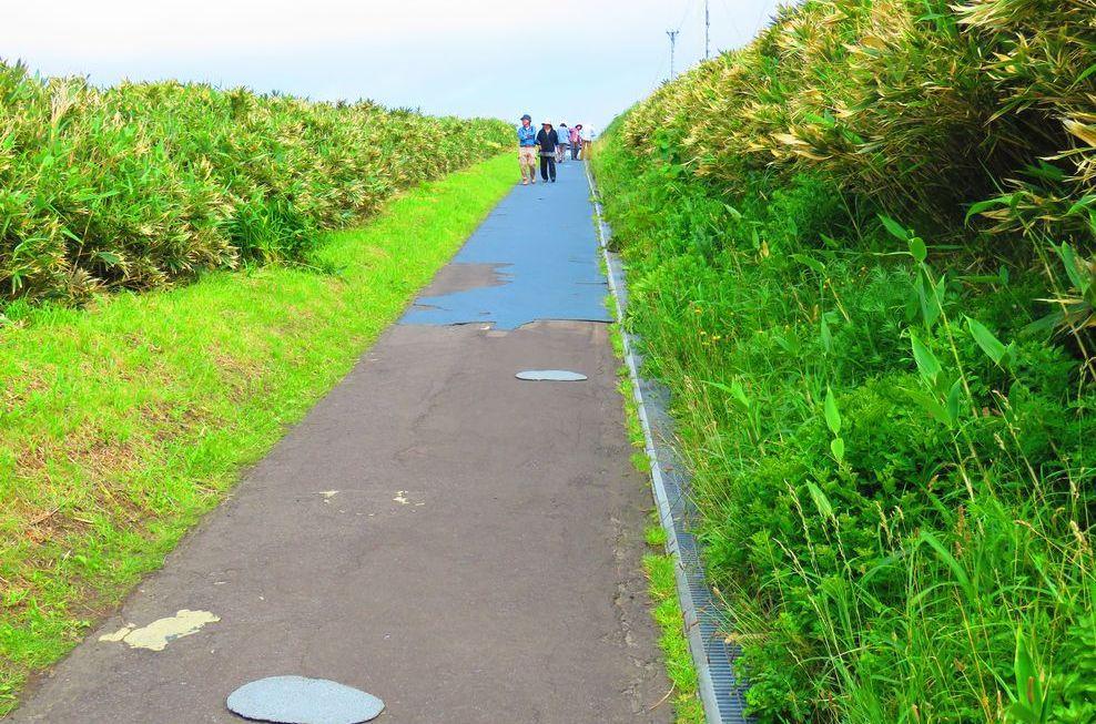 駐車場から神威岬灯台方向へ