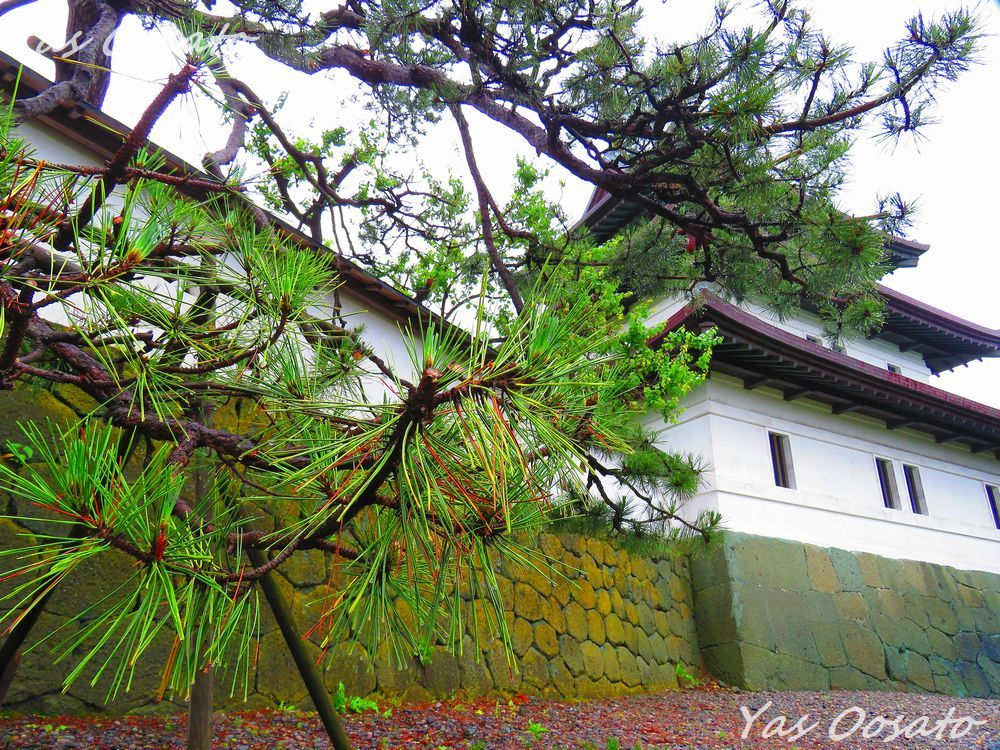 土方歳三が攻めた「福山城(松前城)」は北海道内唯一の日本式城郭