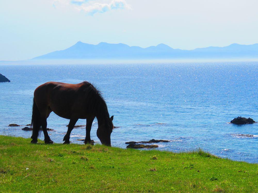 観光では海の美しさも外せない