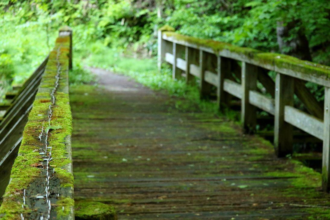 願いが書き込める「願橋」