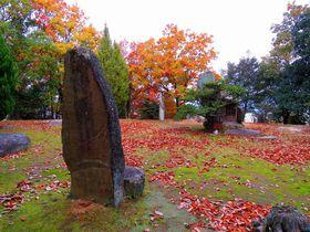 前方後円墳のルーツ!?岡山県倉敷「楯築遺跡」で歴史と秋の散策