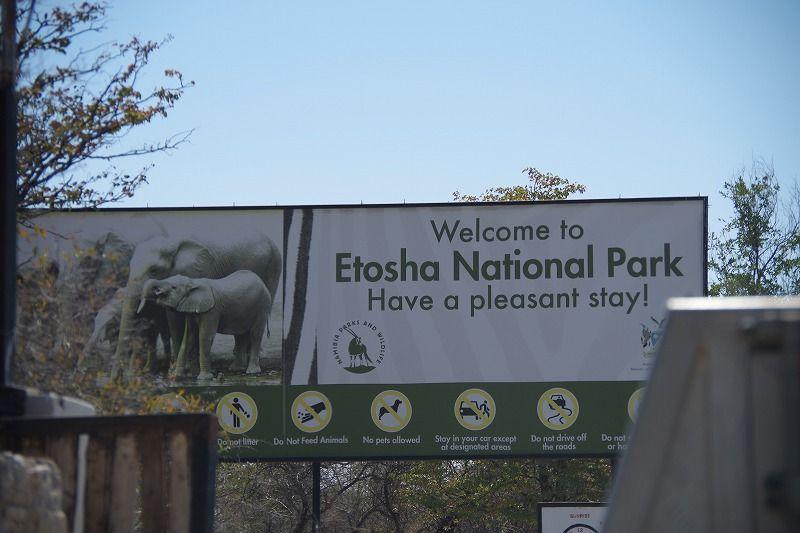 エトシャ国立公園のサファリ