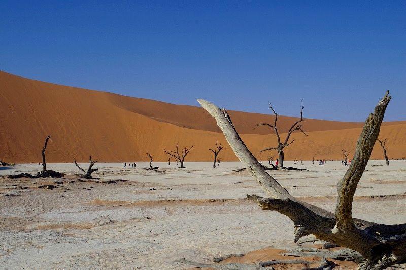 ナミビアの絶景!ナミブ砂漠の赤い砂丘と必見の神秘的な景色