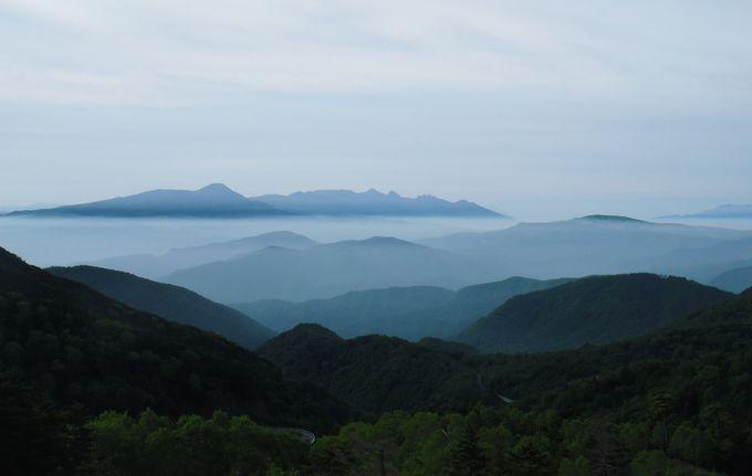 素晴らしい雲海を見るには早起きが絶対条件!