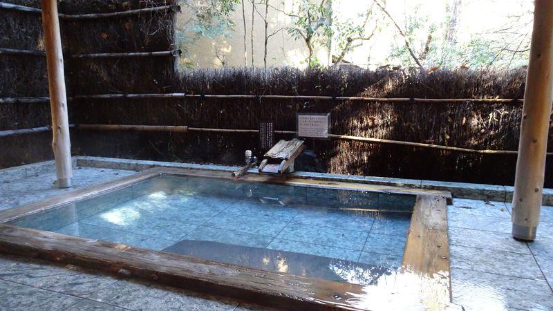 伊豆高原で温泉に浸かりながら森林浴「花吹雪」には自然がいっぱい
