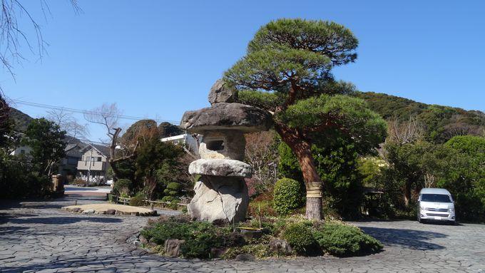 歴史ある純和風旅館は驚きがいっぱい