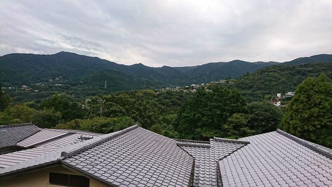 閑静な高台に佇む自然に囲まれた立地