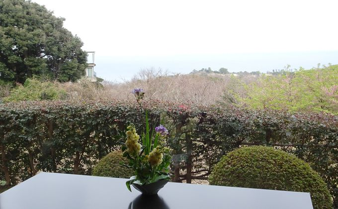 相模湾の眺望と旅館自慢の庭園を楽しむ