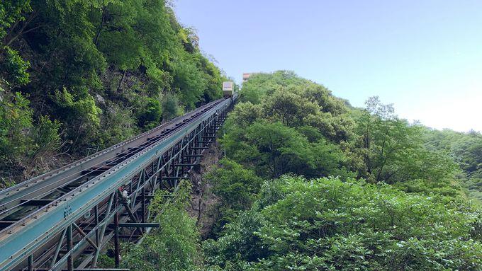 祖谷渓谷を眺めながら5分間の空中散歩