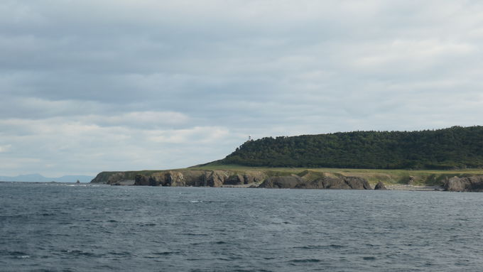 ホテルの前の港からクルーズ船に乗って世界遺産知床を体験