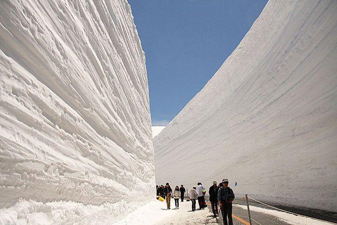 7.雪の大谷ウォーク