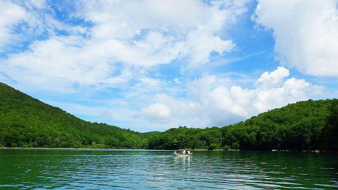 爽やかな風を感じながらボートを漕ぎだしてみよう!