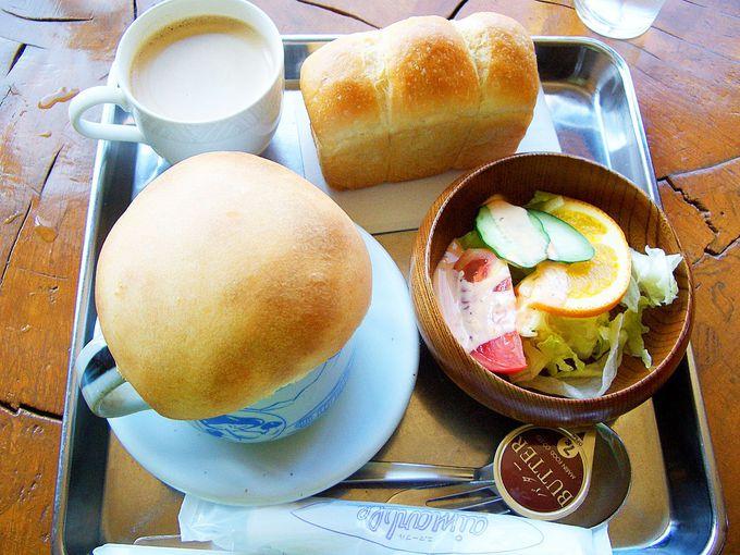 ほっとする美味しさ。きのこスープとボルシチ料理