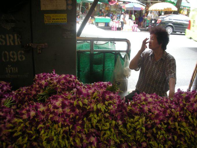 日本では高級品の蘭の花が激安