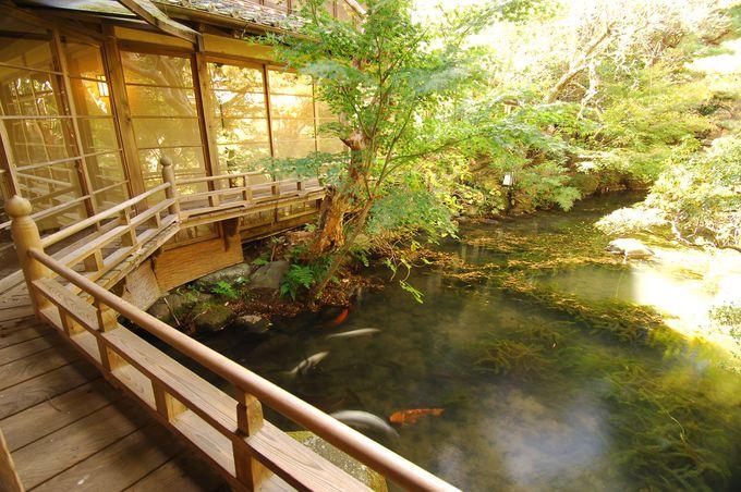 2.湯回廊菊屋