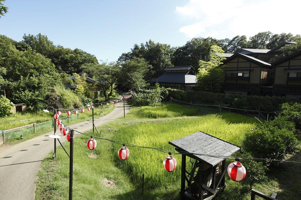 八幡野温泉郷 杜の湯 きらの里で伊豆高原の贅沢な田舎暮らしを体感!