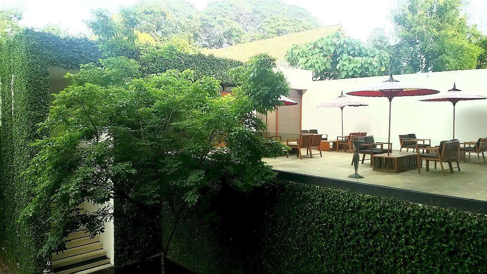 緑豊かな庭園を眺めるテラス席が素敵
