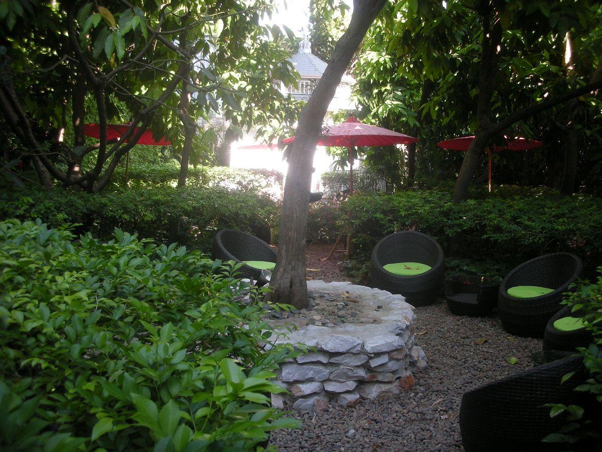 小鳥のさえずる中庭も素敵