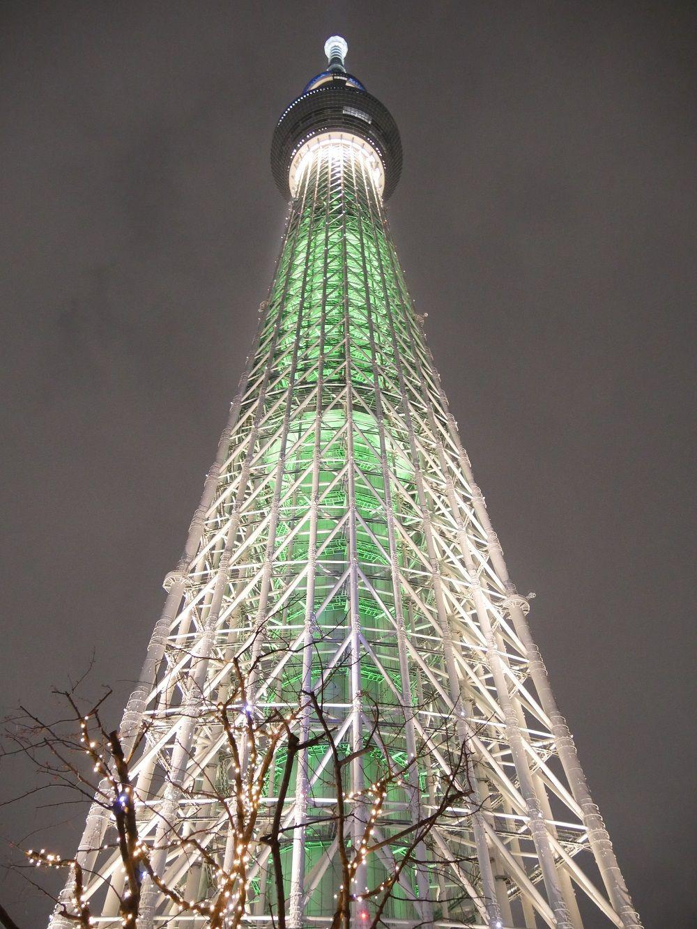 出た!まるで世界一高いクリスマスツリー!