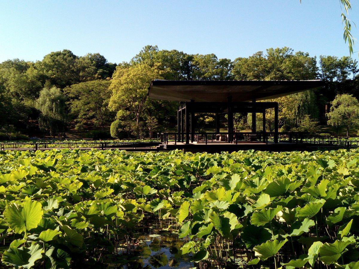 4.日本庭園/万博記念公園