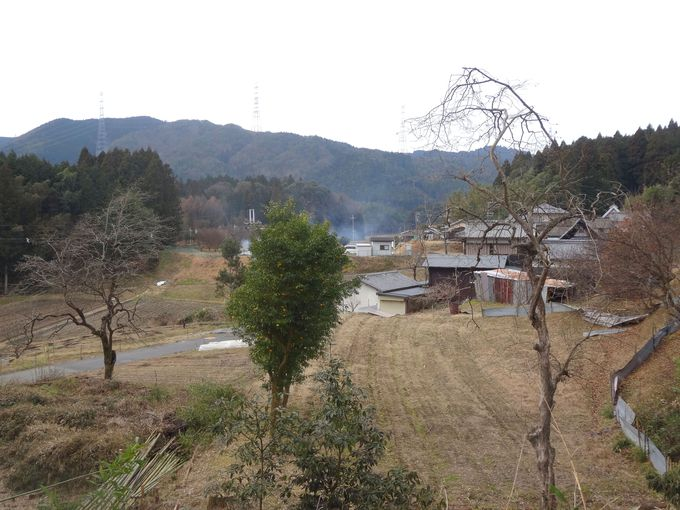 自然豊かな豊能町で厳選国産大豆と天然水で納豆作り