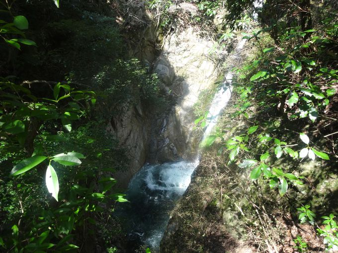 森林浴でリフレッシュ。緑の中の鼓ヶ滝
