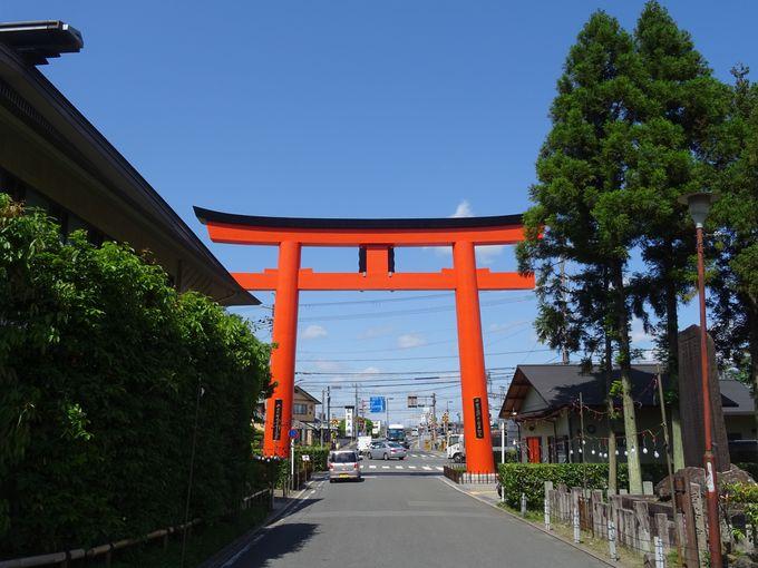 実は貴重な歴史が垣間見られる場所、松尾大社