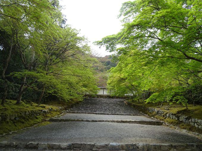 小倉山のふもと、二尊院へ