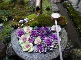 京都・長岡京「柳谷観音」お庭の眺めを独り占めでアロマ癒し体験