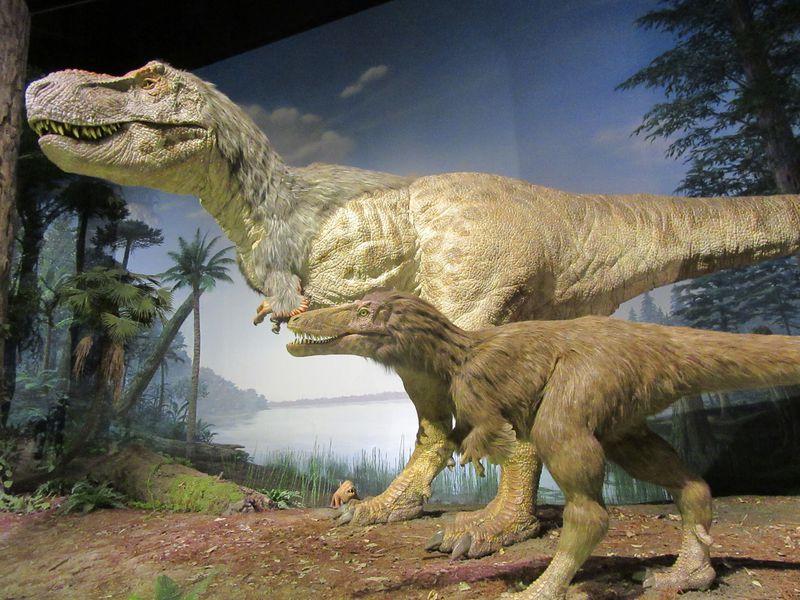 新登場!大迫力の恐竜に会いに行こう!茨城県自然博物館