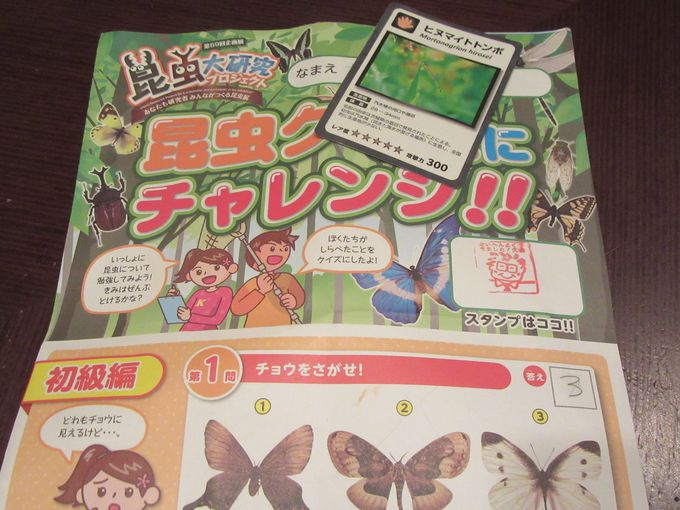 """期間限定""""昆虫大研究プロジェクト""""開催中!"""