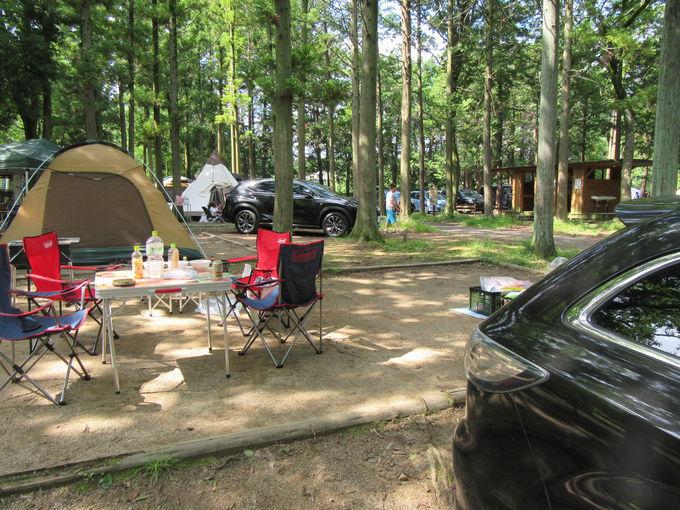オートインキャンプサイトを予約しよう!