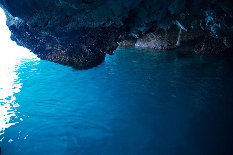青の洞窟もウミネコと遊覧も!景観が美しい「浄土ヶ浜」