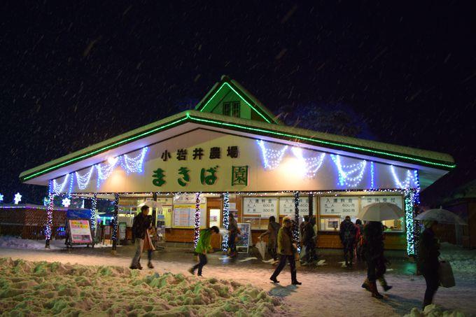 宮沢賢治が愛した「小岩井農場」は冬は一面雪の世界