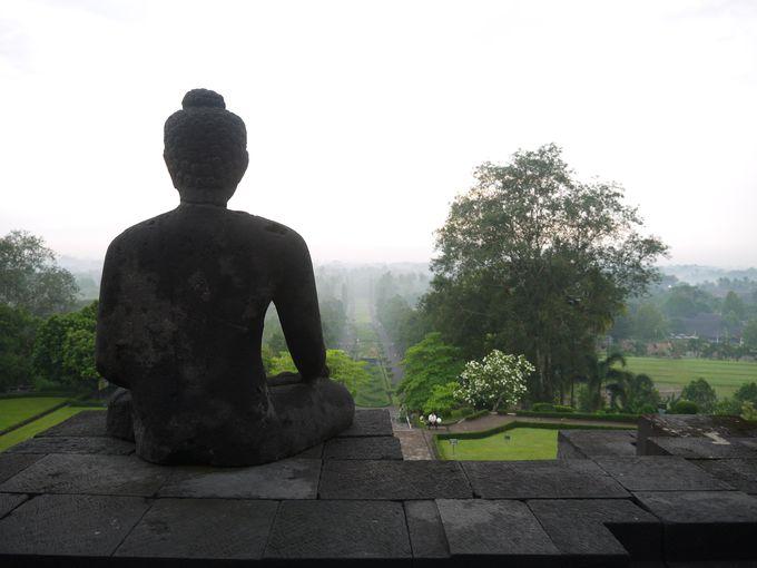 絶景!朝靄に包まれたボロブドゥールからの景色