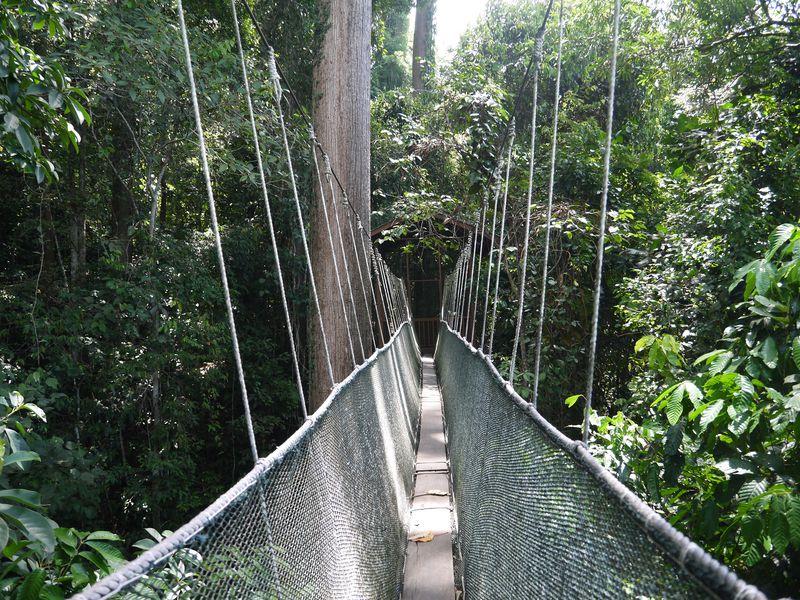 世界遺産の中にある温泉!コタキナバル「ポーリン温泉」で大自然を満喫