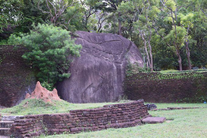 かつての僧院の姿も!ジャングルの中に突如現れる庭園と修行場跡