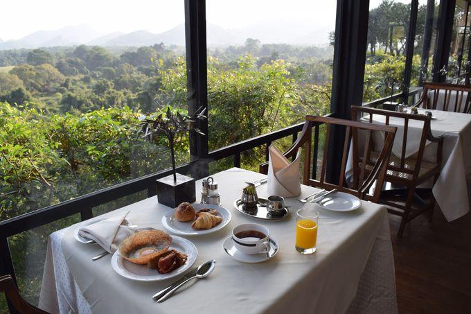 種類豊富で美味しい!朝日を浴びながらの朝食はプライスレス