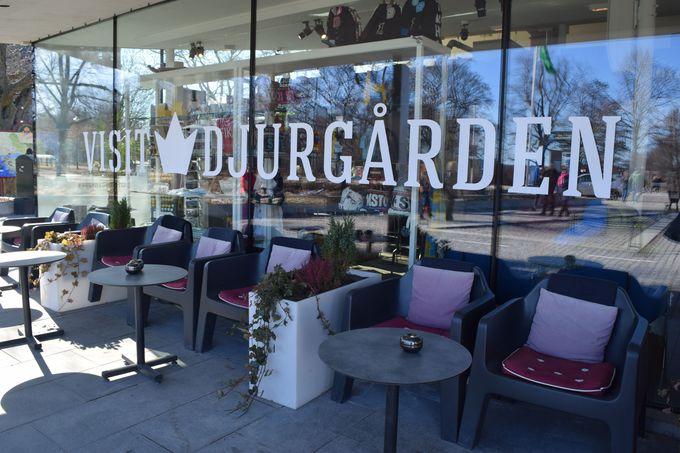 景色が最高!ユールゴールデン島のビジターセンター「Visit Djurgarden」でフィーカ