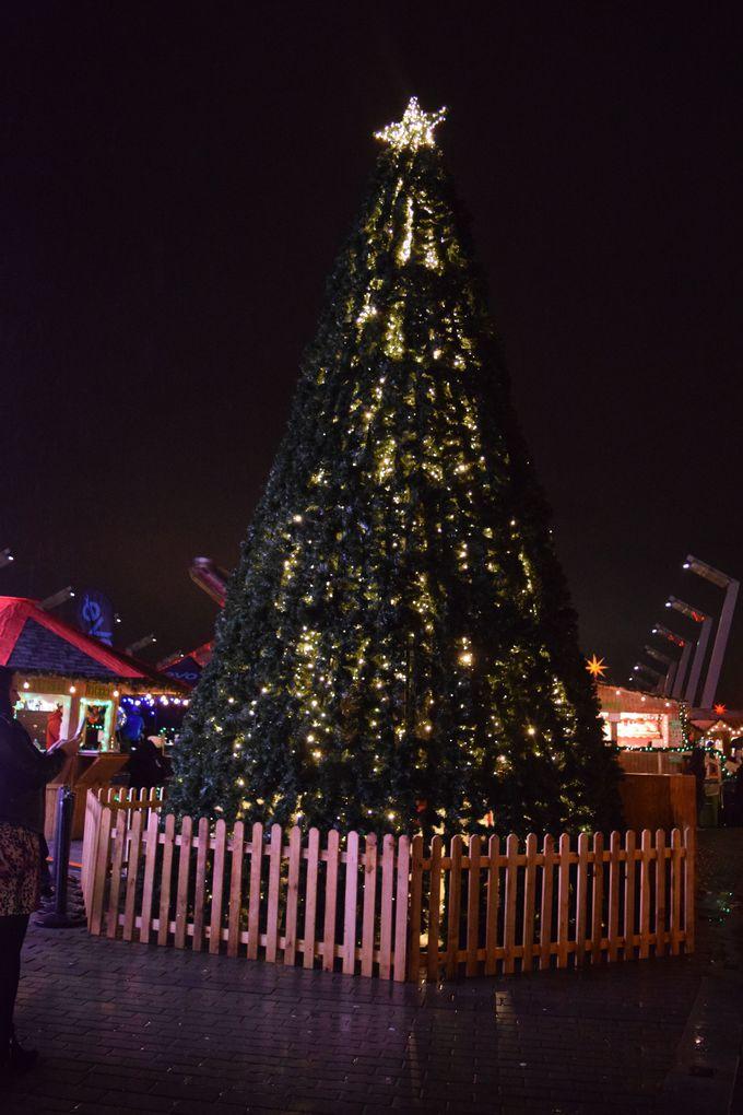 巨大なクリスマスツリーは中にも入れる?