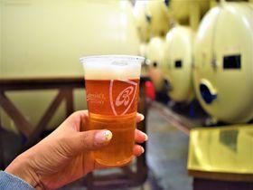 本物のバドワイザーはチェコに!ビール好きはブドヴァイゼル工場へ