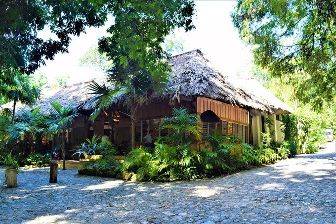 ジャングルの中に突如現れる素敵なホテル「ジャングル・ロッジ」