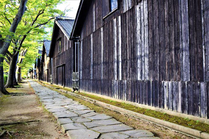 酒田の顔!ケヤキ並木が美しい「山居倉庫」