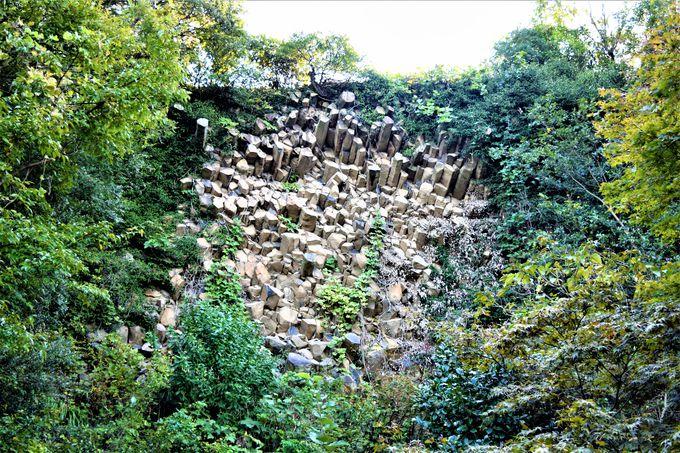 鬼が棲んでいる?観光の目玉「鬼ヶ島大洞窟」