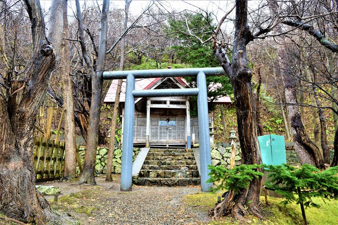 幸福運巡りの茂入神社も忘れずに!