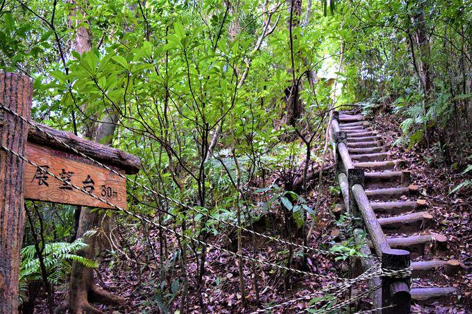 日本の滝100選にも選ばれた!マリユドゥの滝