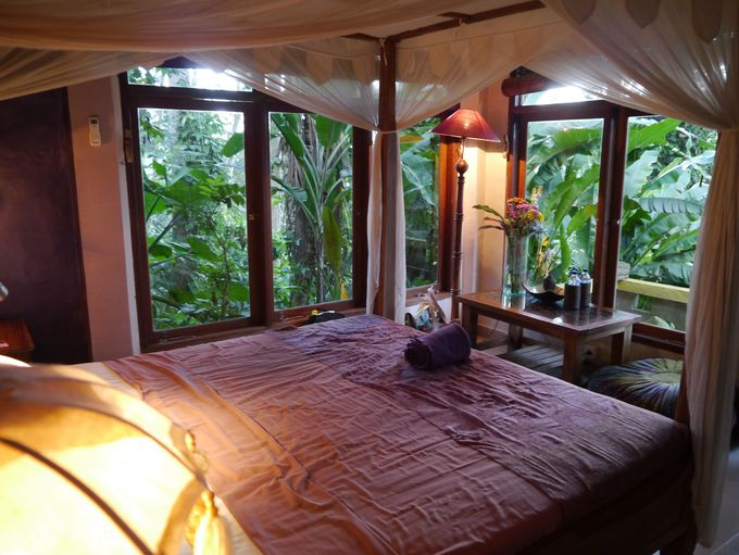 ジャングルの中の大人の隠れ家「グリーン スピリット ヴィラ」