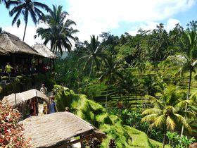 初めてのバリ島観光におすすめ!カーチャーター王道モデルコース