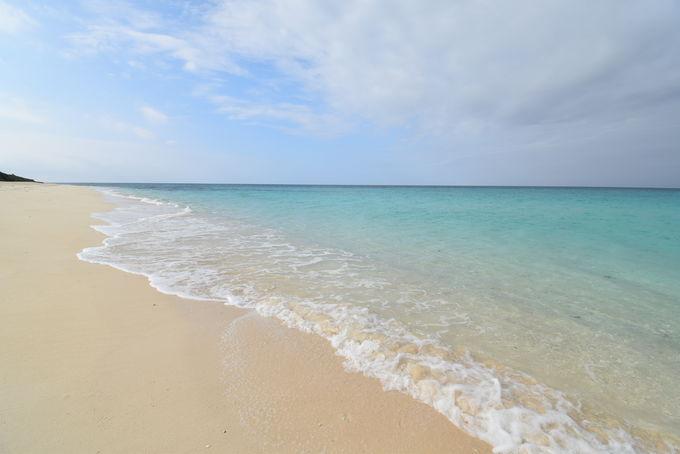 美しいビーチとスターゲイジング(星空観測)ツアー